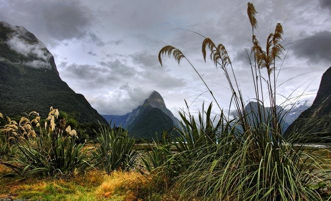 Con la excepción de Milford Sound, la población de Fiordland es cercana a cero. Las extraordinarias lluvias y la densa vegetación que crece en las empinadas montañas complican el acceso al parque.