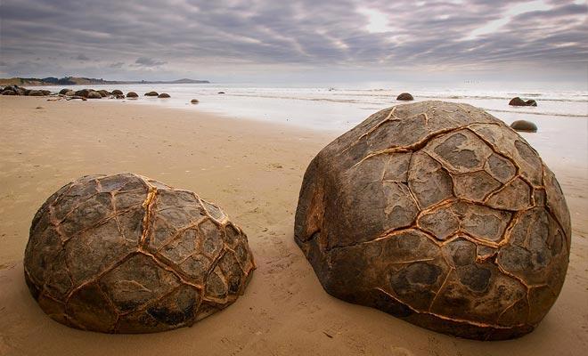 Ze kunnen verward worden met schelpen van reuzenschildpadden of met eieren van dinosaurussen ...