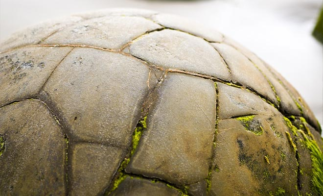 Sommige keien lijken op voetbalballen of eieren die klaar zijn om uit te klagen ...