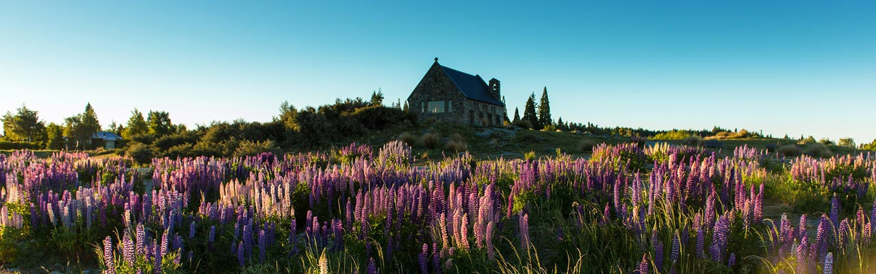 The church of the good shepherd near the Mount Cook.