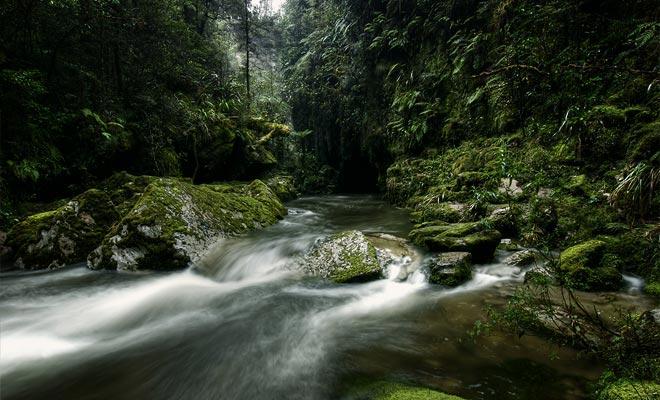 Het Nationaal Park Paparoa kan zonder gids worden bezocht. Echter, recente kaarten moeten worden aangevraagd van de iSite, omdat de paden vaak worden gewijzigd volgens het weer.