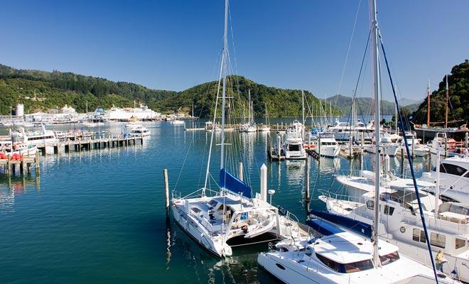 Het huren van een boot of een kleine zeilboot maakt het mogelijk om van eiland naar eiland te varen, vooral in de Bay of Islands. U zult genieten van verlaten stranden en u kunt zelfs dolfijnen zien.