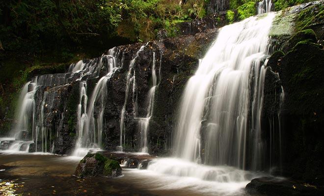 En las regiones donde más de siete metros de lluvia caen cada año, los ríos producen espectaculares cascadas como las caídas de Purakaunui.