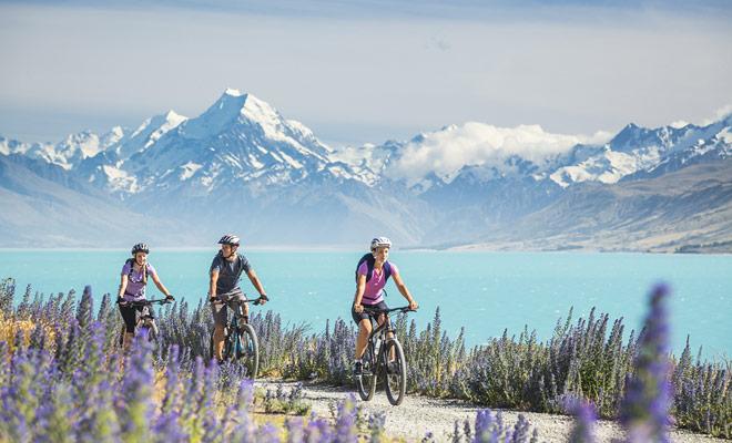 La bicicleta de montaña es una actividad practicada sea cual sea la temporada en Nueva Zelanda, pero las excursiones más hermosas se realizarán en primavera cuando los valles están cubiertos de flores, o en verano cuando las temperaturas son más agradables.