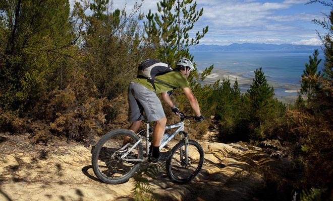 Incluso si hace ciclismo sólo de vez en cuando, encontrará senderos en Nueva Zelanda en su nivel.