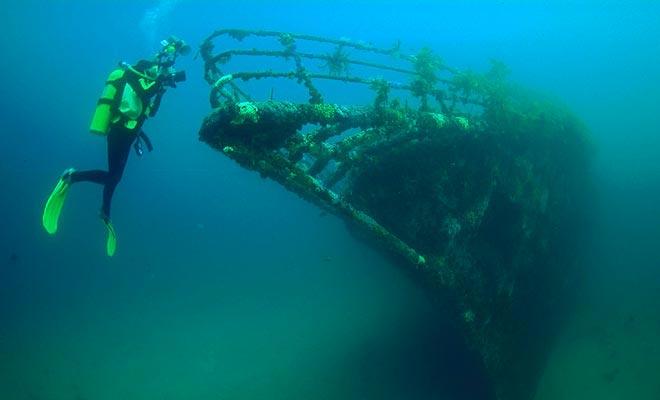 Het wrak van de Rainbow Warrior is uitgegroeid tot een rif voor vis. Scuba-diving bedrijven organiseren uitstapjes om te observeren wat overblijfselen van het Green-Peace-schip.