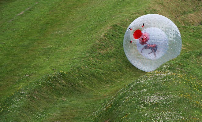 El Zorb es una gran esfera de plástico que le permite descender una colina. En verano, incluso puede pedir que se agregue agua dentro del Zorb para sentirse como en una lavadora!