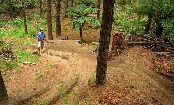 También conocido como Whakarewarewa, bosque de las secoyas tiene más de 60 kilómetros de senderos de la bici de la montaña. Ideal para paseos familiares, así como para los entusiastas de los deportes extremos.