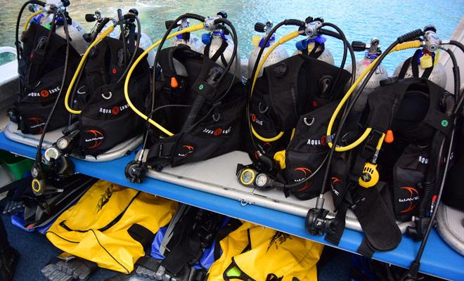 Er is geen probleem om een duikdoop te maken, aangezien het begeleide personeel u door de hele ervaring begeleidt.