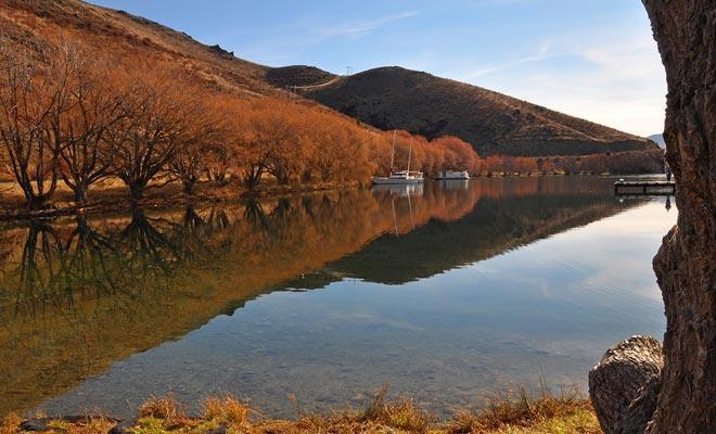 De herfstmaanden zijn spectaculair in de provincie Otago. De bomen van Queenstown en Wanaka zijn bedekt met oranje bladeren.