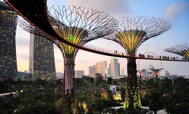 De tuinen van Singapore zijn prachtig. Als je tussenstop genoeg tijd biedt, zou het jammer zijn om dit bezoek te missen.