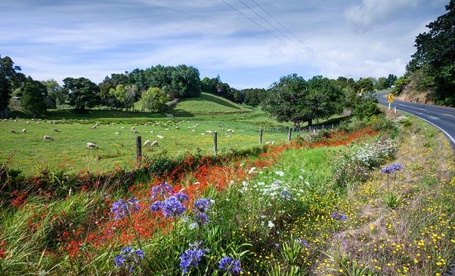 El comienzo de la primavera está marcado por un clima inestable con mucha lluvia. La situación está mejorando después de mediados de octubre.