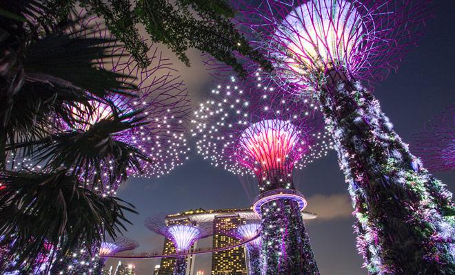 Marina Bay Sands, los distritos chinos e indios son imprescindibles en Singapur, pero los jardines (especialmente por la noche) dejan un recuerdo inolvidable.