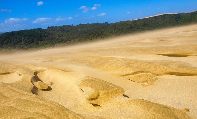 Debido a la deforestación, el extremo norte de Northland tiene grandes dunas y se asemeja a un desierto. Usted puede subir las dunas y montar en las tablas de surf.