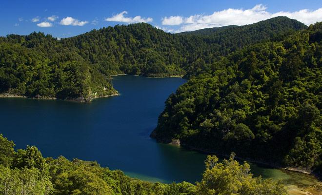 Este lago de 54 km2 está ubicado en el Parque Nacional Te Urewera, y su nombre significa