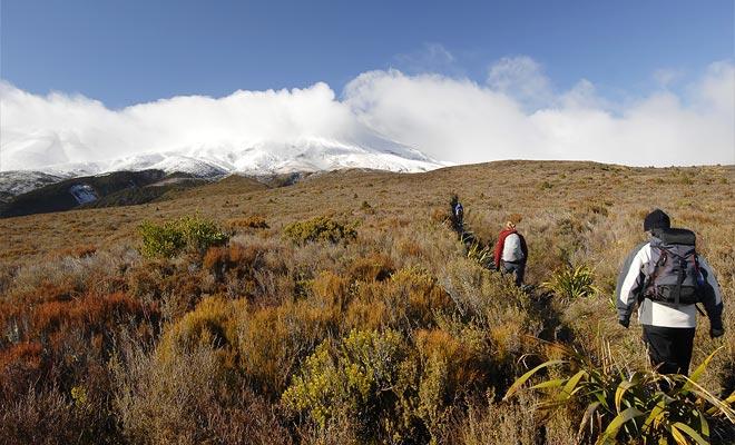 Zodra het meer Rotoaira in zicht is, kunt u ervan uitgaan dat de rest van de wandeling voorzichtig zal aflopen.