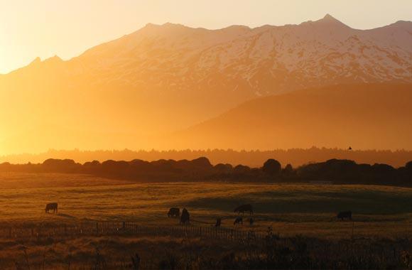 Uno tiende a olvidar que el Tongariro se encuentra en un parque nacional. Espero que tengas la oportunidad de admirar la puesta de sol sobre el valle!