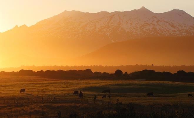 Men heeft de mogelijkheid om te vergeten dat de Tongariro zich in een nationaal park bevindt. Ik hoop dat u de kans krijgt om de zonsondergang over de vallei te bewonderen!