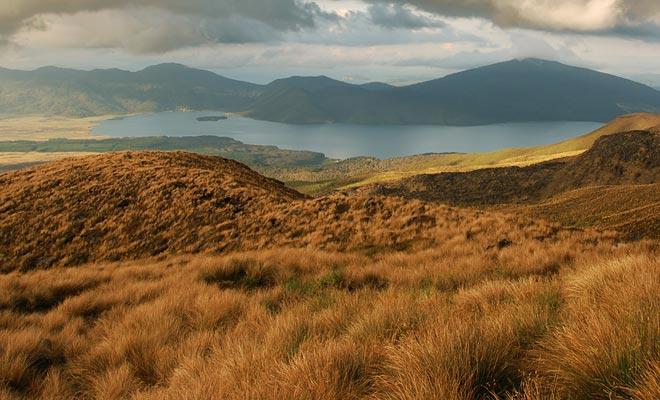 Het meer Rotoaira (niet te verwarren met het Roturua-meer) wordt geopenbaard aan wandelaars aan de andere kant van de vulkaan. Het is de terugkeer naar de natuur na een lange wandeling op een dorre vulkanische grond.