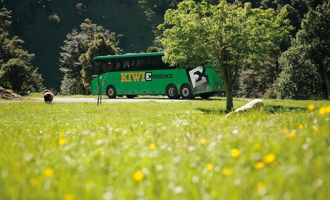 El autobús no es el modo de transporte más rápido, pero la extensa red permite viajar a cualquier parte del país. Pero esta no es la forma más económica.