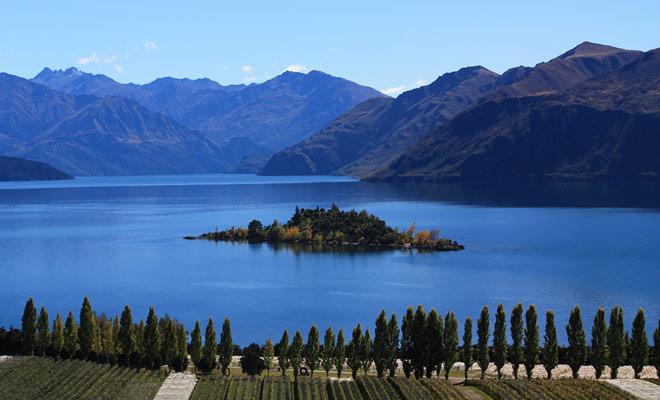 El viñedo Rippon Vineyard es propiedad de Nick Mills y se encuentra justo en frente de la isla Ruby en el lago Wanaka. Se puede llegar en bicicleta o en coche (hay aparcamiento gratuito en el sitio).