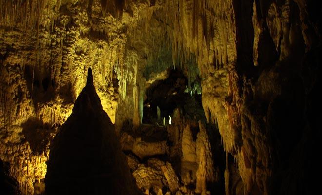 De Glowworm Caves heeft een origineel onderdeel dat de bijnaam heeft genoemd