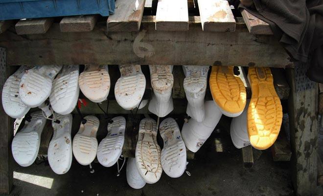 De rubberen laarzen worden geleverd, geef gewoon uw maat aan.