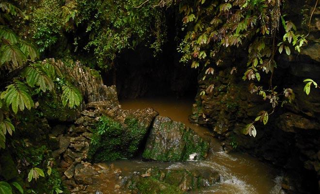 El río de Ruakuri desaparece bajo tierra donde atraviesa cuevas antes de volver a la superficie.