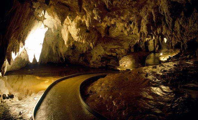 Le grotte di Waitomo devono essere visitate con una guida e vedrete i glowworms che brillano sul soffitto.