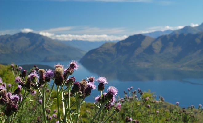 Het hele gebied was eens bedekt met gletsjers. In de loop der millennia hebben ze de bergen gevormd en het meer bevallen.