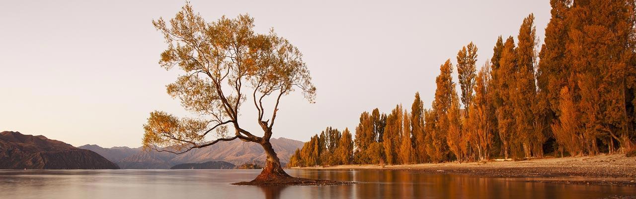 Wanaka is een stad van Otago bekend om zijn landschappen.