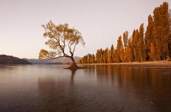 Wanaka heeft een mild klimaat en een adembenemend panorama. Het is misschien het mooiste landschap in Nieuw-Zeeland.