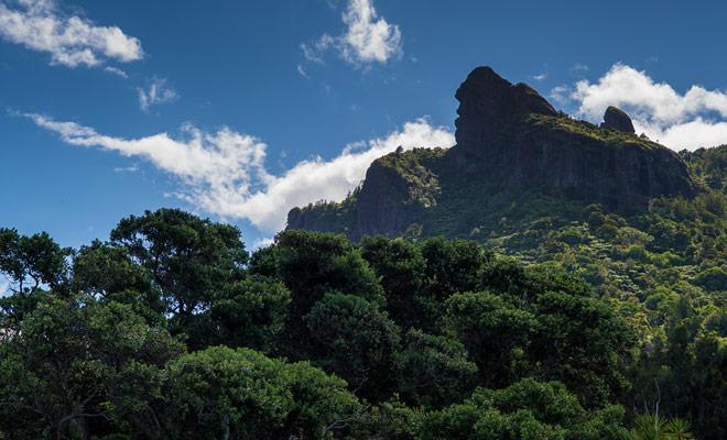 Op een hoogte van 403 meter was de berg Manaia bron tijdens de oude vulkanische uitbarsting, maar in de Maori-legende is het zowel een halve vis als een vogelmonster.