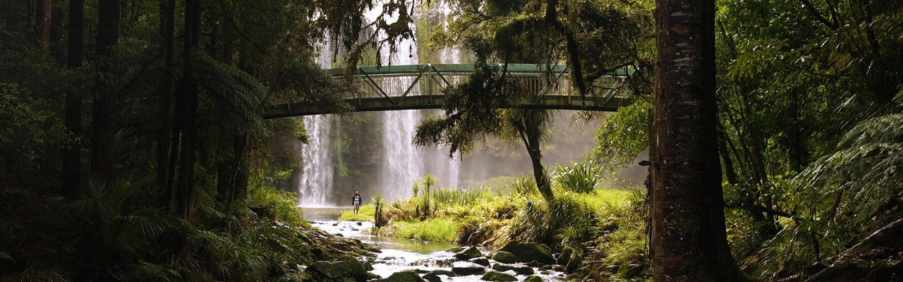 Whangarei Falls in Northland