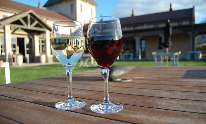 Pocos franceses han tenido la oportunidad de degustar los vinos de Nueva Zelanda. Sin embargo, las producciones neozelandesas están ahora bien establecidas en la escena internacional.