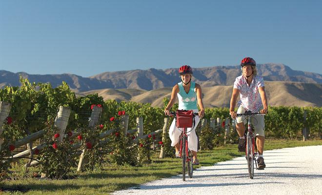 Alquiler de bicicletas y unirse a un recorrido por los viñedos para degustar los mejores vinos del país. Si el tiempo está bien, esta es una de las mejores actividades de Nueva Zelanda.