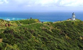 Para llegar al Cabo Reinga, puede conducir en la playa o tomar un camino interior.