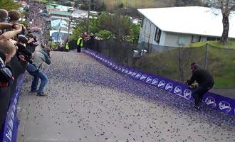 La multitud grita la cuenta atrás y luego los miles de dulces caen por la calle. Las primeras tres bolas llegadas son declaradas ganadoras.