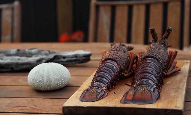 Er zijn kleine kazerne die kreeften in het schiereiland verkopen. De Kaikoura Seafood BBQ staat bekend om zijn kreeften tegen een halve prijs.