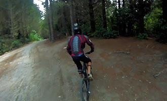 El Bosque de Redwoods ofrece una red de senderos ideales para el ciclismo de montaña.