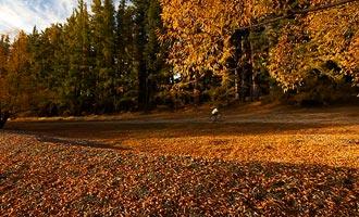 El otoño es una temporada muy interesante para los viajeros, porque los precios se revisan a la baja mientras el paisaje sigue siendo fantástico
