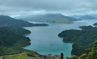 Innumerables especies endémicas como kiwi, weka o tekapo hacen de Nueva Zelanda un destino favorito para los amantes de la naturaleza.