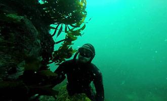 Dit prachtige amateurrapport legt uit waarom duiken een must is.