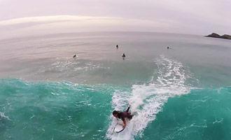 Soms komen de dolfijnen langs de surfers in Nieuw-Zeeland.