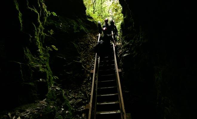 Cave World organiseert bezoeken van Ruakuri Cave en andere grotten in de omgeving.