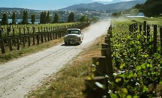 Circuits maken het mogelijk om de wijngaarden te bezoeken en deel te nemen aan proeverijen, zoals bij Rippon Vineyard.