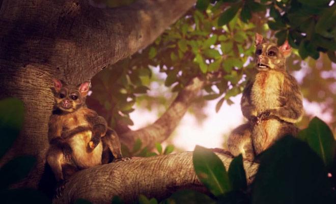Cette publicité néo-zélandaise qui met en scène deux possums est à mourir de rire!