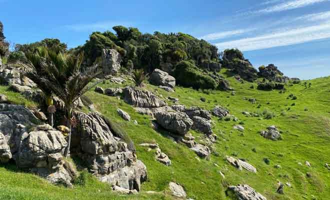 Collines de Te Hapu