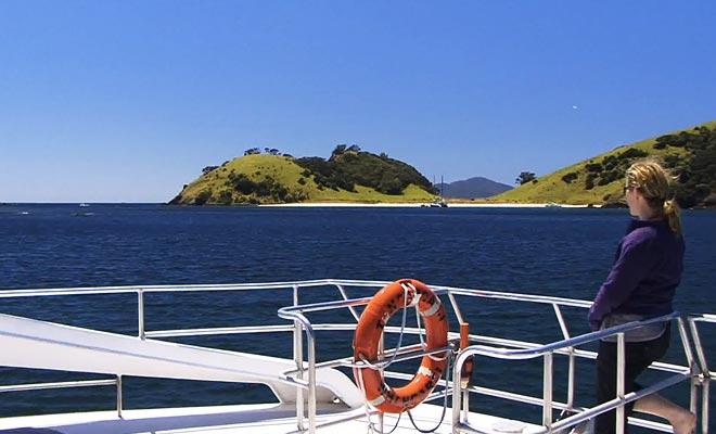 De nombreux tours opérateurs organisent des sorties en bateau pour approcher les dauphins.