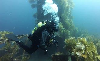 La plongée sur l'épave du Canterbury se déroule en compagnie de deux guides expérimentés.